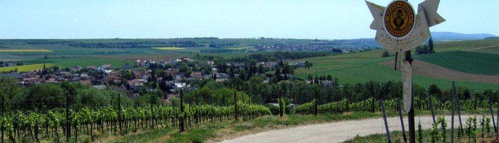 Alzey-Weinheim