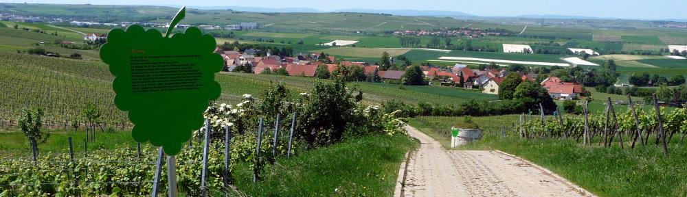 Gau-Heppenheim