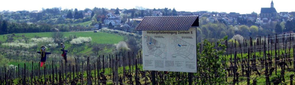 Zornheim
