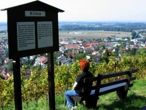 wlp_zwingenberg04_gr