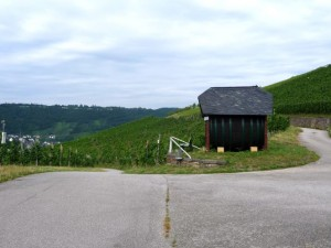 wlp_enkirch20_gr