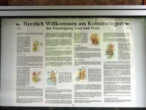 wlp_ilbesheim02_gr