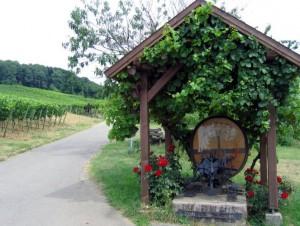 wlp_schweigen-rechtenbach05_gr