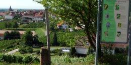 a-z_burrweiler