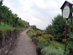 wlp_kernen-stetten_05