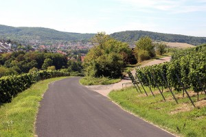 wlp_gerlachsheim_14