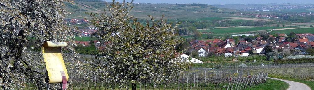 Bubenheim