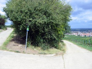 wlp_oppenheim17_gr