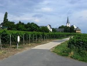 www_hochheim05_gr