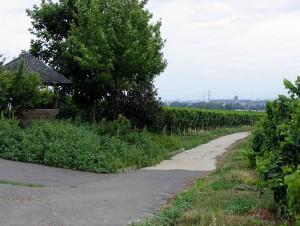 www_hochheim13_gr