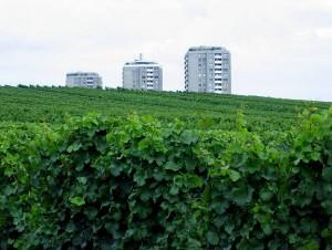 www_hochheim15_gr