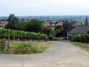 wlp_schweigen-rechtenbach29_gr