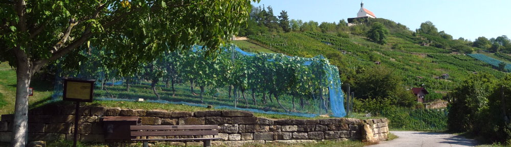 Weinlehrpfad Wurmlingen