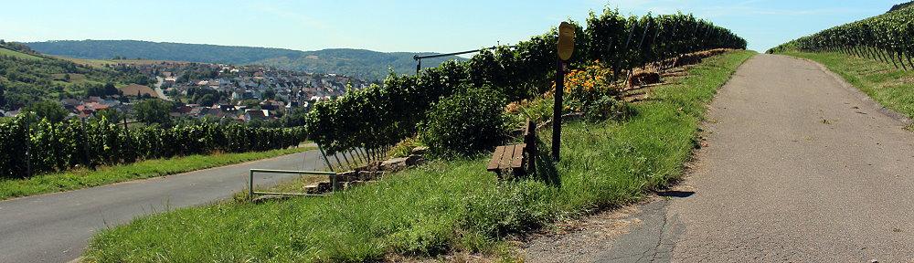 Weinlehrpfad Gerlachsheim