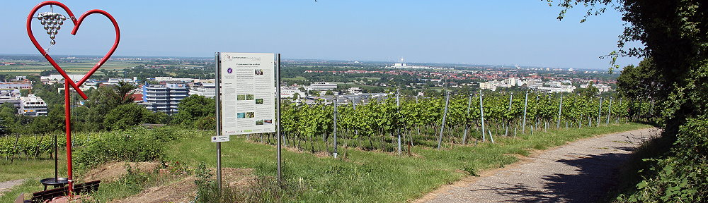 Erlebniswanderweg Heidelberg-Rohrbach